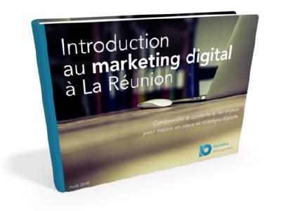 introduction-marketing-digital-reunion