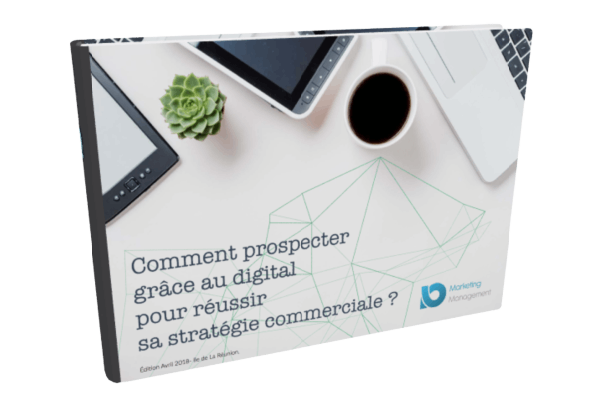 guide-strategie-commerciale-reunion